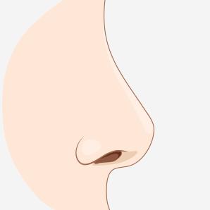 코끝 모양이 변형된 이미지